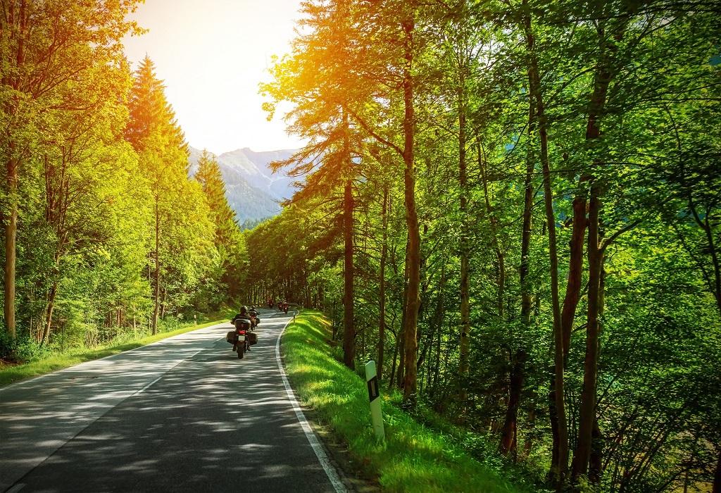 erfahren Sonne Wald